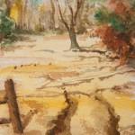 Watercolor Walk